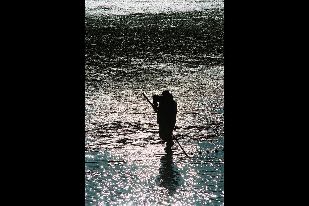Fishermen in La Dombes (Ain)