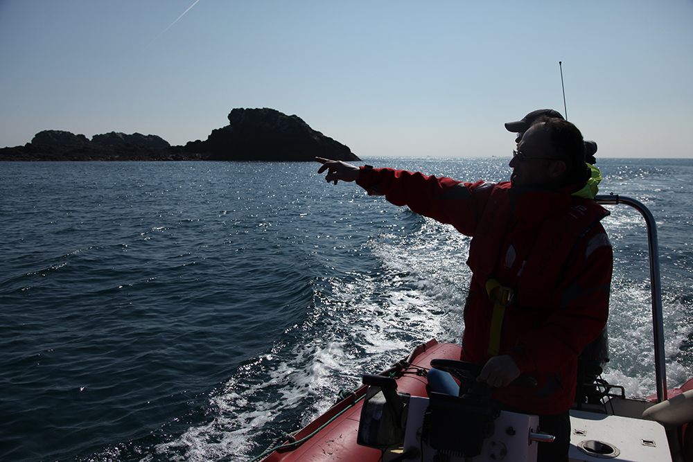 Equipped for monitoring wild dolphins and seals