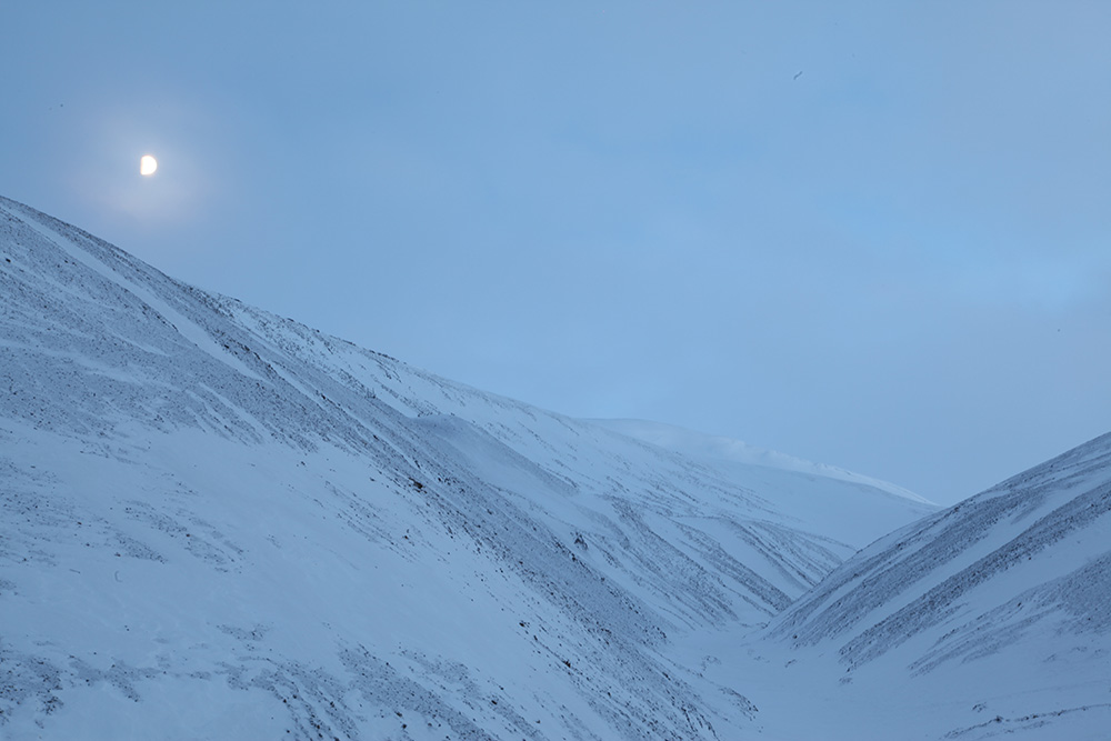 Nature around Longyearbyen...a weapon is necessary for walking