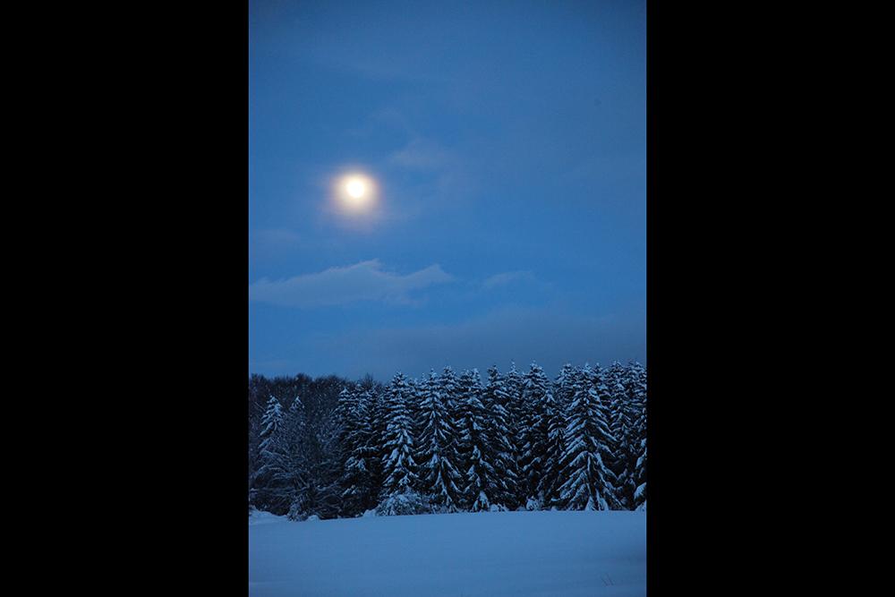 Moonlight, just after a heavy snowfall.