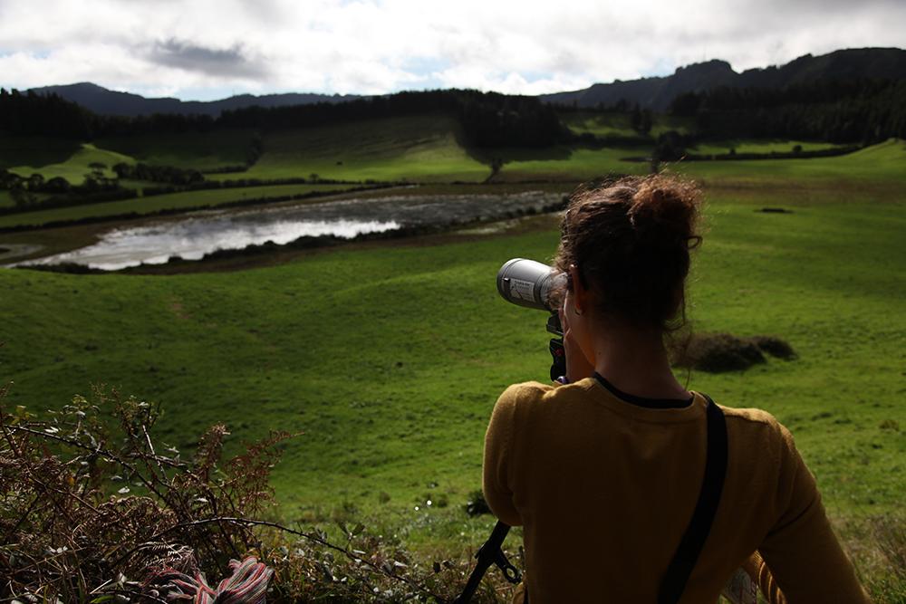 Birdwatching near a pond