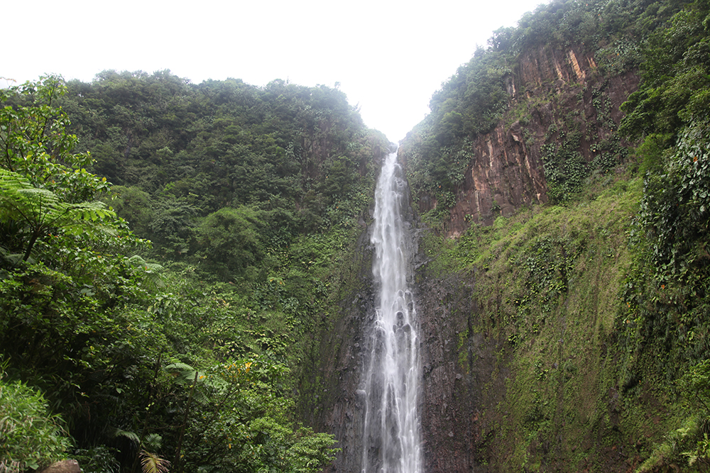 One of the highest waterfalls in Guadeloupe