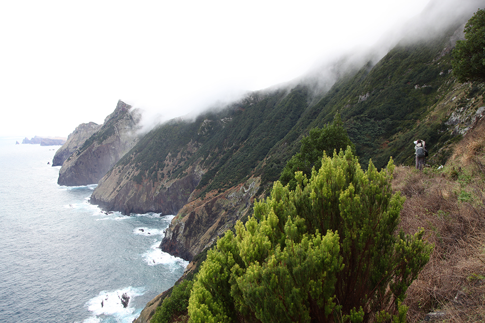 Miguel Sequeira, botanist, on one of the most beautiful coastal paths of Madeira