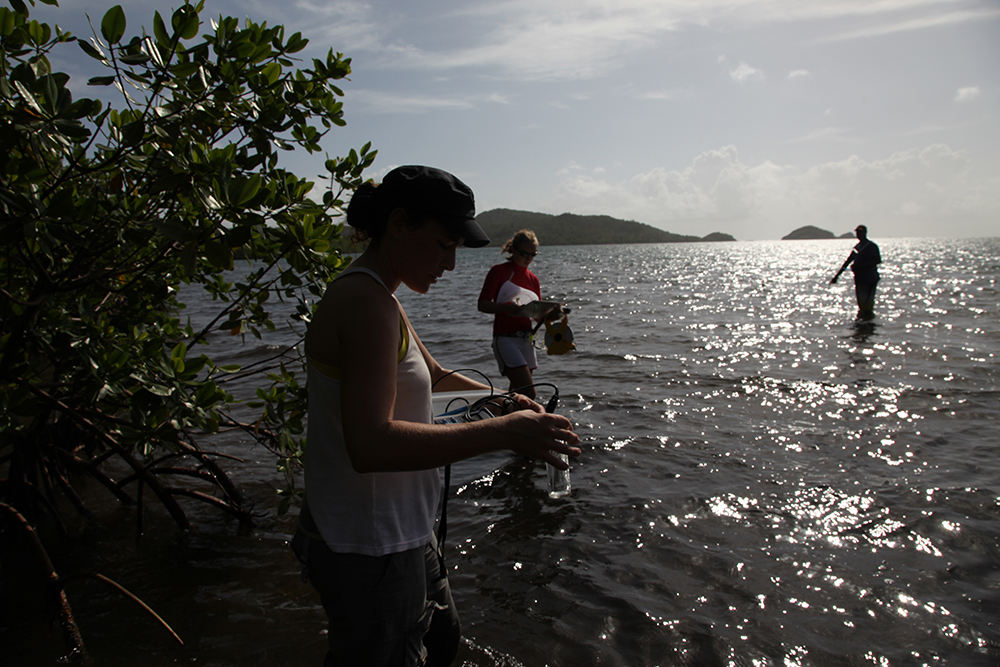 Mélanie and Marie study seagrass